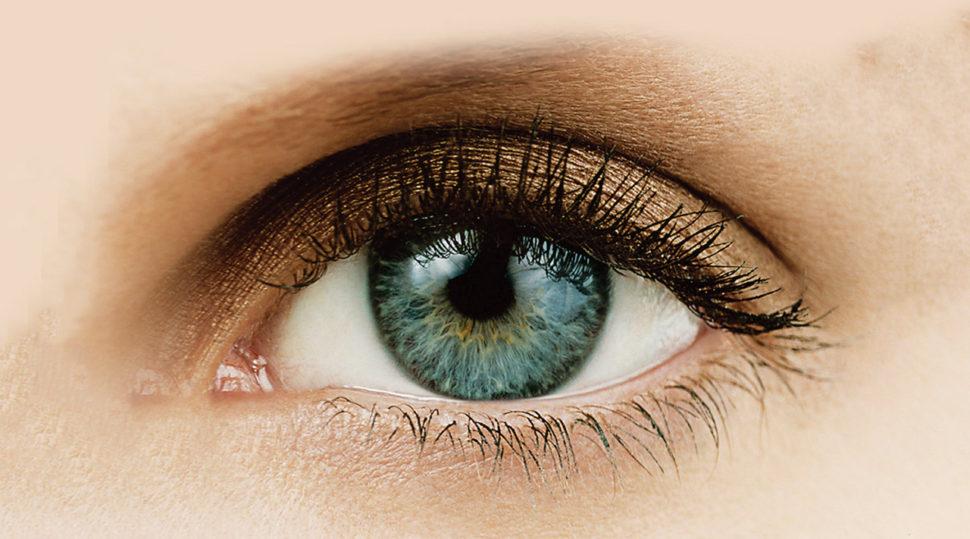 Das menschliche Auge - Wunderwerk der Natur